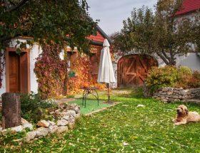 tuin winterklaar gemaakt